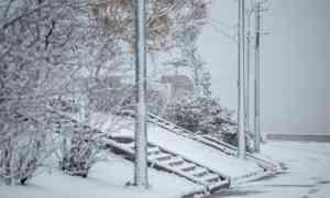 4 декабря в Архангельске похолодает до  −5°С