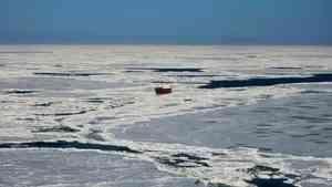 Гидрологи прогнозируют, что к концу января Белое море полностью покроется льдом