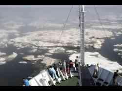 Представители САФУ участвовали в создании навигатора востребованных в Арктике профессий