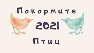 В Архангельской области стартуют новые конкурсы эколого-культурной акции «Покормите птиц-2021»