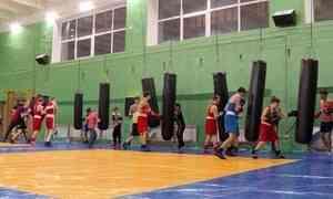 Архангельские боксёры спортивной школы «Каскад» представят Поморье начемпионате Северо-Запада