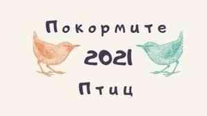 Подведены итоги конкурсов эколого-культурной акции «Покормите птиц-2021»