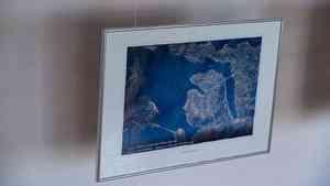 В архангельских Гостиных дворах открылась выставка фотографий Ивана Вагнера