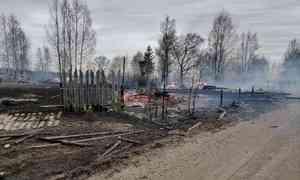 В умирающей деревне Красноборского района сгорели 11 домов