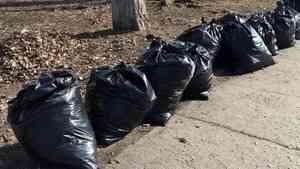 Ответственность за вывоз мусора после субботников переложили на муниципалитеты