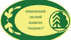 Школьница из Холмогорского района - в финале Всероссийского лесного конкурса