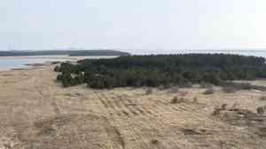 На грядущих выходных в Архангельской области ожидается теплая и дождливая погода