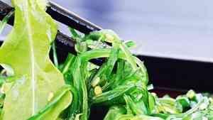 В Поморье разрабатывают школьное меню с использованием добавок из водорослей