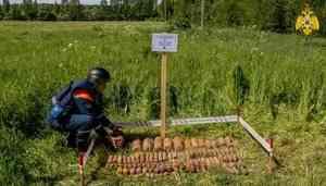 Пиротехники МЧС России приступили к уничтожению боеприпасов в Тверской области (видео)