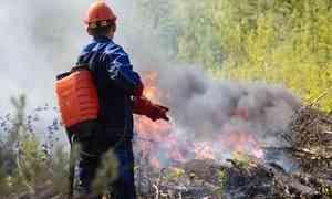 Лес и огонь под запретом: в Архангельской области объявлен особый противопожарный режим