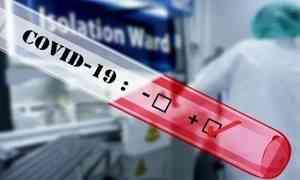 За сутки в регионе выявлено 82 новых случая заболевания COVID-19