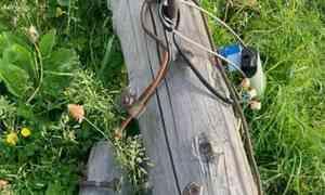 ВПриморском районе электромонтёр погиб, упав спятиметровой высоты вместе состолбом
