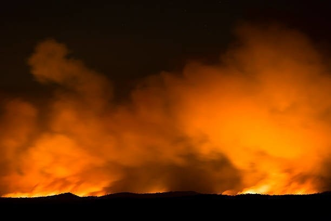 В Плесецком районе во время пожара в собственном доме погиб мужчина