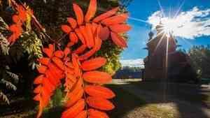 В Поморье широко отпразднуют Всемирный день туризма