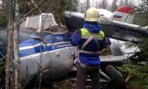 Восстановлена картина происшествия спассажирским Ан-2, совершившим аварийную посадку прямо влесу