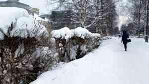На Архангельск обрушится снегопад