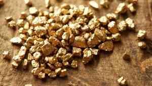 В Архангельской области геологи обнаружили запасы золота