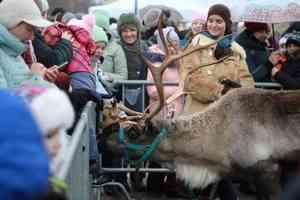 Фестиваль «Добро пожаловать в Арктику» порадовал жителей крупных городов России