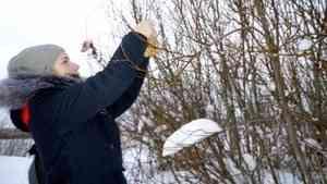 Юные экологи Северодвинска осваивают проектную деятельность при поддержке Фонда президентских грантов