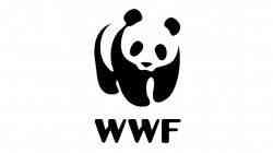 Вся правда об изменении климата: WWF и САФУ начинают новый образовательный проект