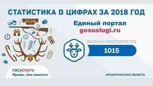 Электронные госуслуги Архангельской области в цифрах за 2018 год