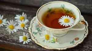 Эксперты «Росконтроля» выявили худшие марки чая на российских прилавках