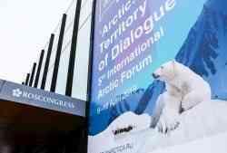 Делегация САФУ подвела итоги участия в международном форуме «Артика — территория диалога»