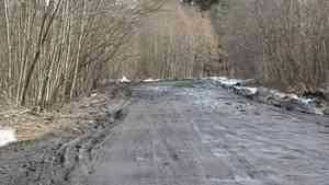 Подъезды к дачным поселкам отремонтируют за счет областного бюджета