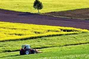 Кадастровая оценка земель сельхозназначения на территории Архангельской области запланирована на 2019 год