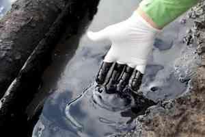 Архангельской области грозит экокатастрофа: в Двину сочатся нефтепродукты с острова Никольский