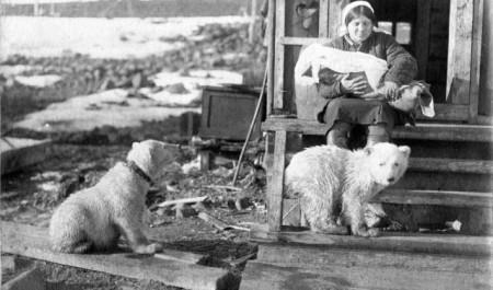 Находка на аукционе. Копия Голубой книги вернётся в Арктику