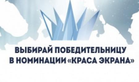 Зрители могут проголосовать за участников конкурсов «Краса Арктики» и «Мистер Студенчество САФУ»