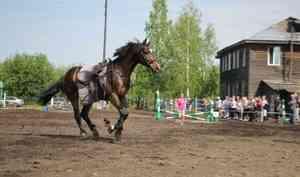 Быстрые и красивые: фоторепортаж с открытия конно-спортивного сезона в Архангельске