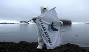 Национальному парку «Русская Арктика» исполнилось десять лет