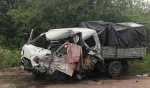 В Вельске мужчина погиб в ДТП с лесовозом