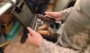 ВКотласе вынесли приговор «коллекционеру» оружия