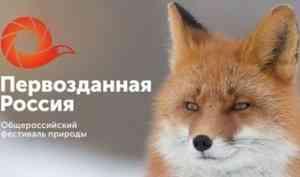 Мастеров фотографии Поморья приглашают к участию в фестивале «Первозданная Россия - 2020»