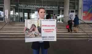 В нескольких городах России люди вышли в поддержку Шиеса с картинами знаменитых художников