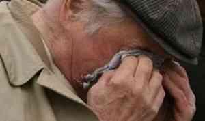 Грабителей, напавших на пенсионера, задержали в Котласском районе
