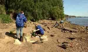 ВАрхангельске волонтёры провели уборку прибрежной территории парка наЛенинградском проспекте