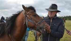 Мезенки опробовали дороги Каргополья: в Поморье прошел дистанционный конный пробег