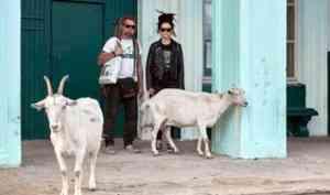 Звезды альтернативной рок-сцены поделились впечатлениями от поездки на Шиес