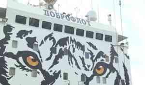 Судно втигровом окрасе доставило вАрхангельск груз дальневосточной рыбы