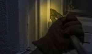 Архангельские полицейские поймали воров бытовой техники