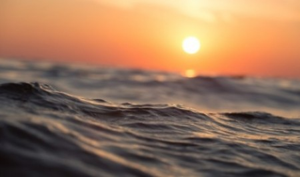 Образ моря обсудят в САФУ