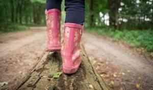 В Плесецком районе нашли пятилетнего мальчика, потерявшегося в лесу