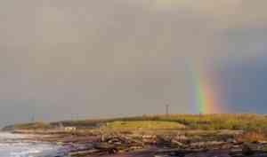 После взрыва в НёноксеРосгидромет нашёл в пробах воздуха из Северодвинска радионуклиды
