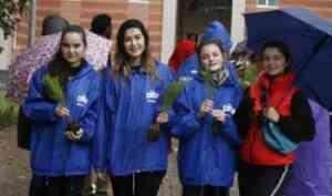 Студенты САФУ облагородили территорию у нового общежития в рамках всероссийской акции «Сохраним лес»