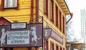 Центральная Ветеринарная Клиника в Архангельске: преимущества и услуги