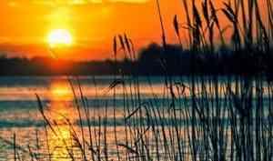 Штормовой ветер поднимет уровень воды в Северной Двине в Архангельске